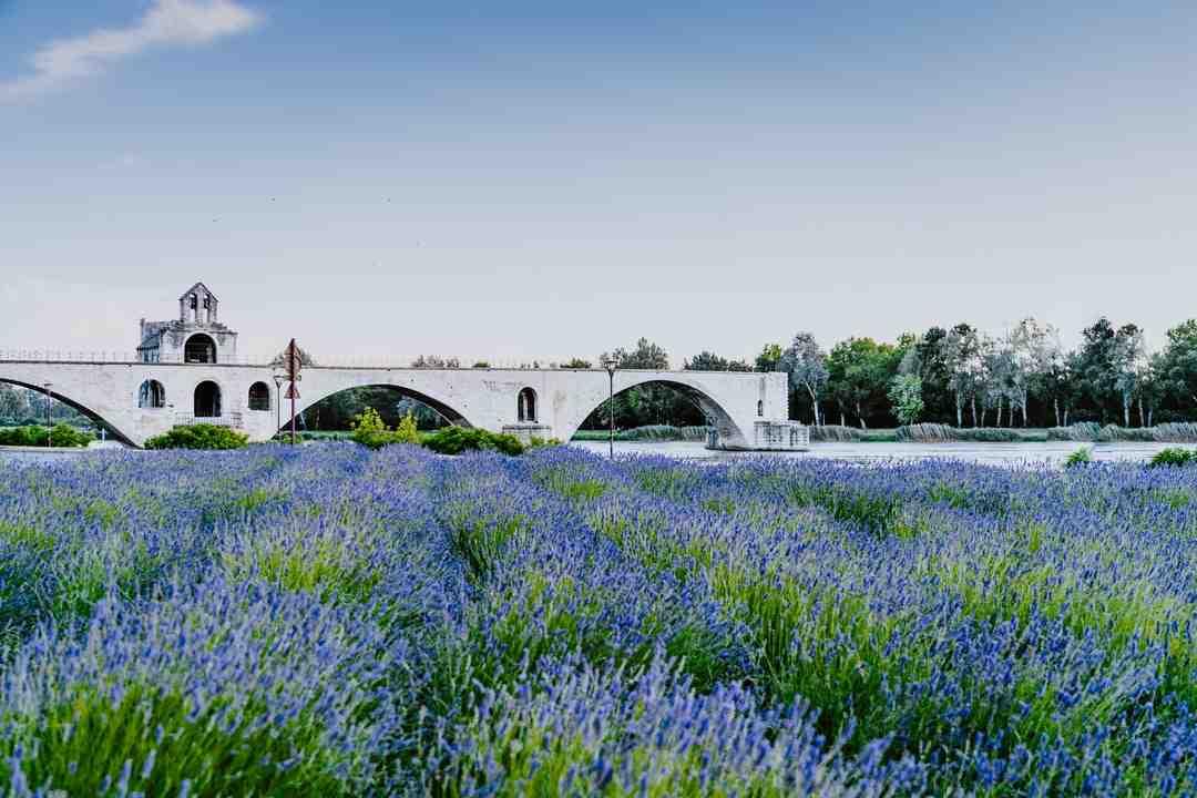 Trouver un Electricien  Avignon